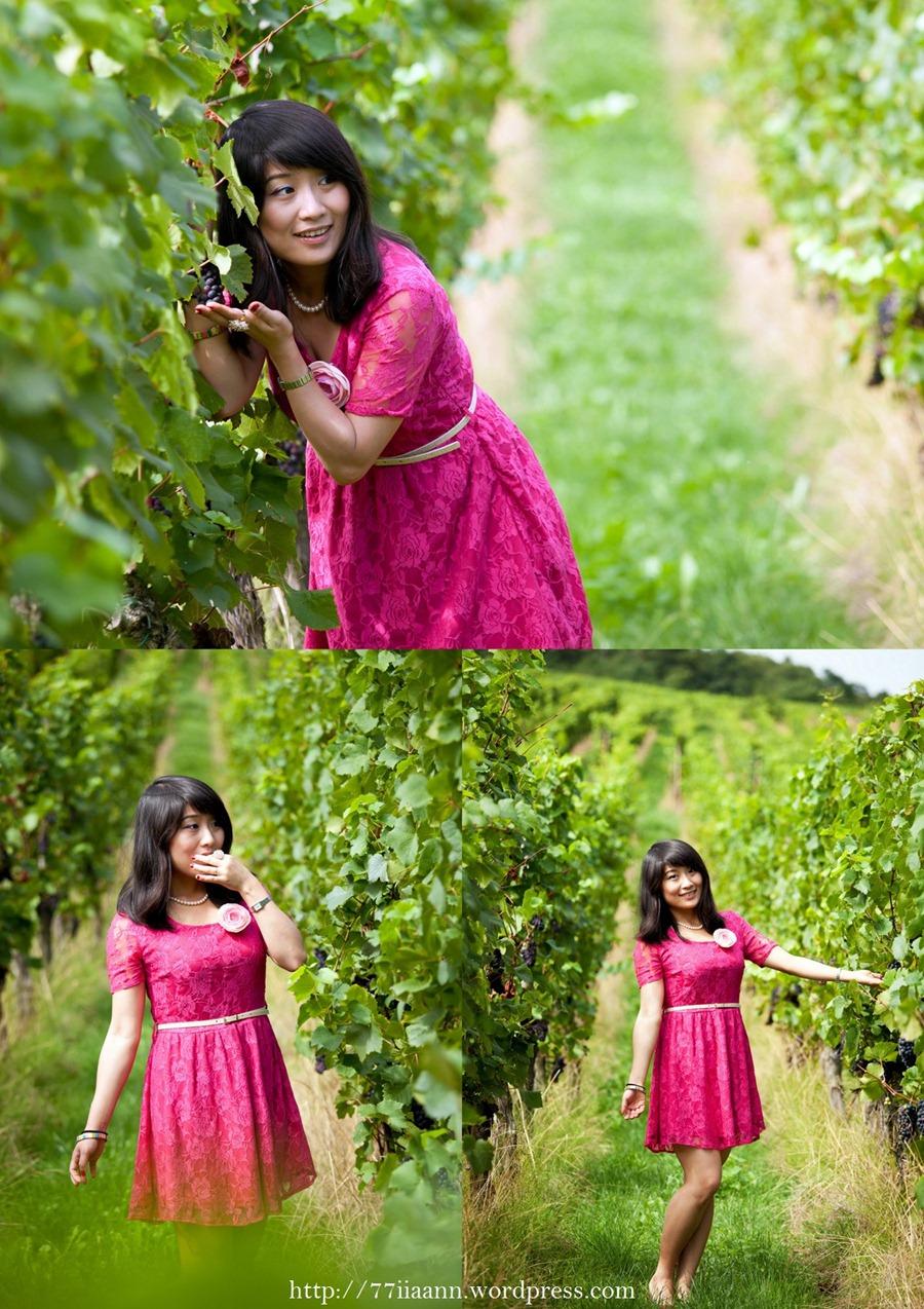 nEO_IMG_vineyard